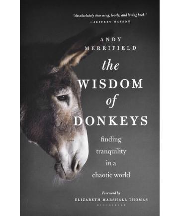 The Wisdom of Donkeys by Andy Merrifield
