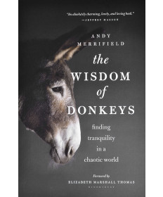 The Wisdom of Donkeys by Andy Merrifield